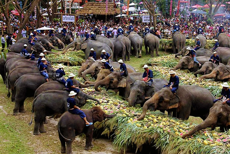 大象沙托克節