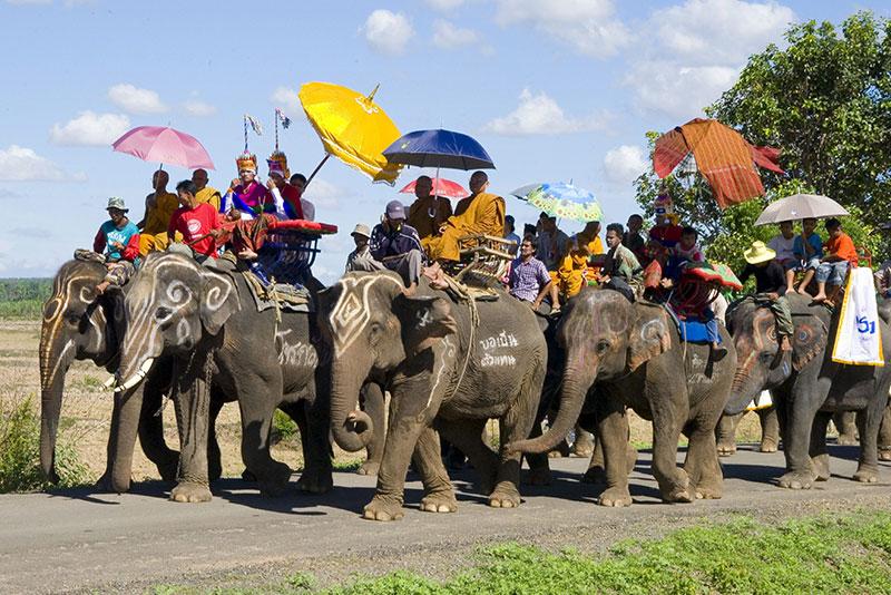 騎大象列隊遊行節